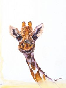 Read more about the article Giraffe