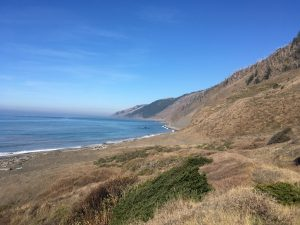 Read more about the article The Lost Coast