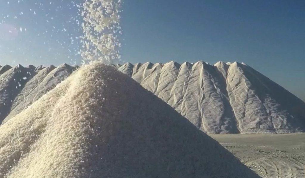 The Community of Salt